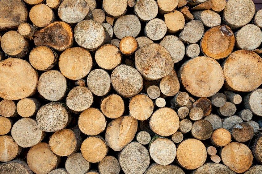 Authentik sur le terrain : Rencontre avec un coureur des bois