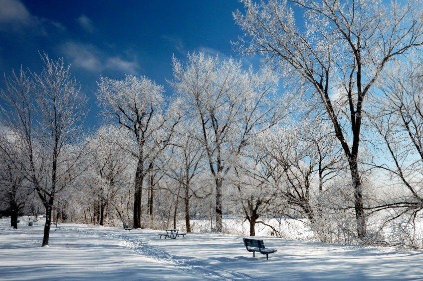Pourquoi oser l'hiver au Canada?