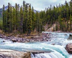 Les 10 incontournables du parc de Jasper