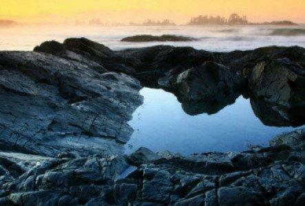 Top 4 des choses à voir sur l'île de Vancouver