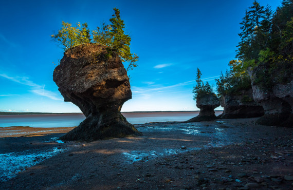 """""""Pot de fleurs"""", Baie de Fundy, NB"""