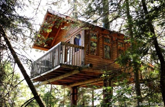 1-cabane-arbre-cap-jaseux