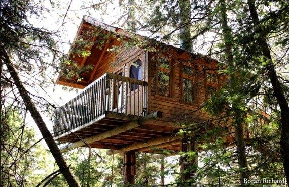 Cabane dans les arbres - Cap Jaseux