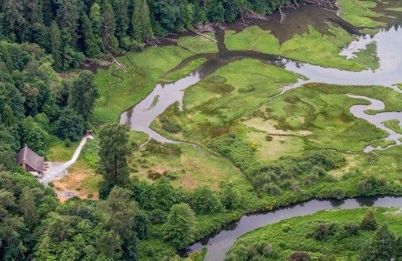 L'estuaire de Golstream
