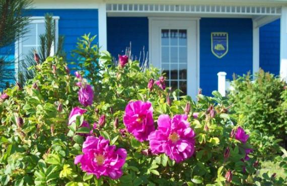 Gîte La Maison du Cap-Vert, Fatima, QC
