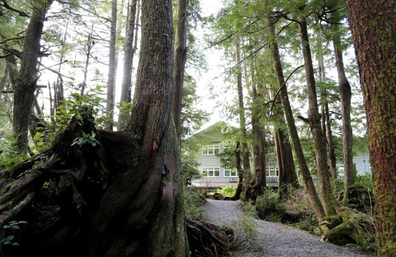 Jamies Rainforest Inn  - Tofino, BC