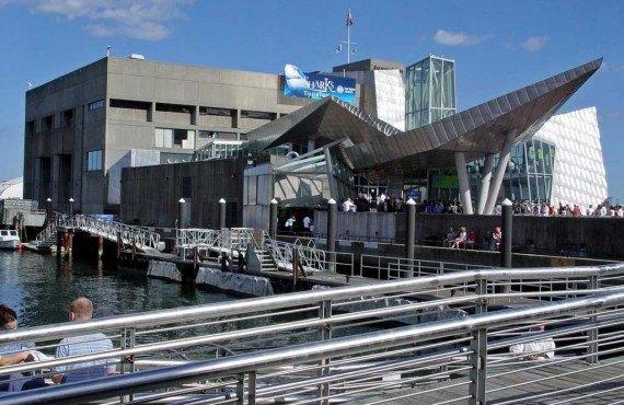 1-new-england-aquarium-boston.jpg