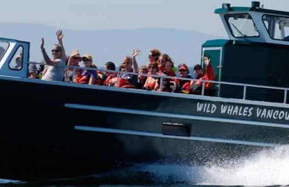 1-observation-orques-victoria-vancouver-bateau.jpg