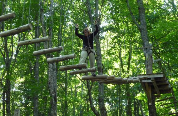 Forêt de Maître Corbeau