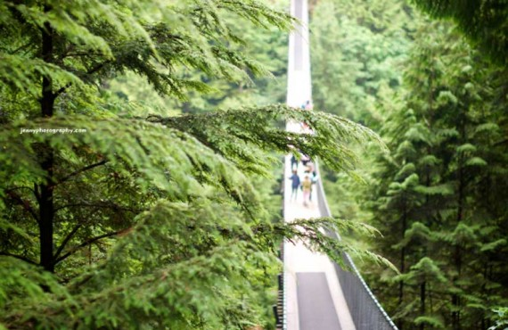 Suspension bridge of Capilano