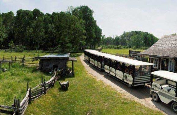 1-train-zoo-st-felicien.jpg