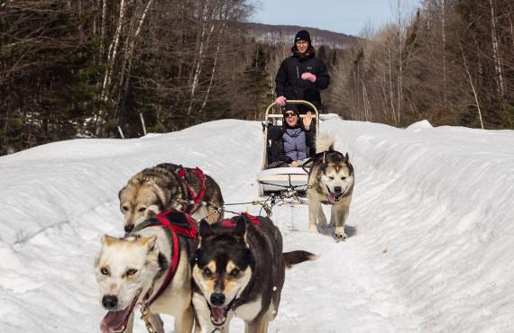 Traîneau à chien - ©Katerine photographe