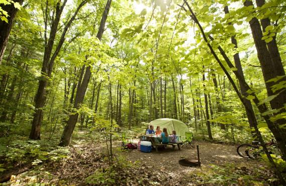 Camping du parc Oka