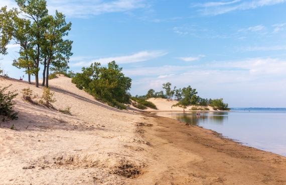 Dunes du Parc Sandbanks