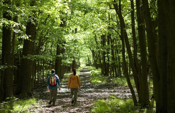 2-camping-parc-iles-boucherville