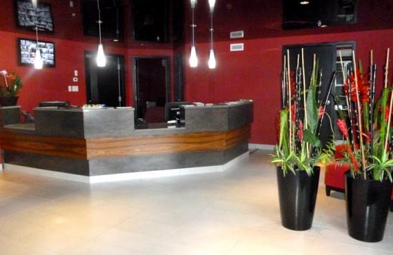 Hôtel de la Boréalie - Réception