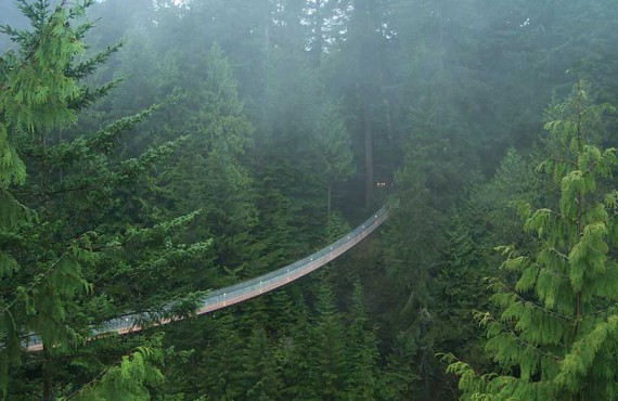 Suspension bridge of Capilano, Vancouver, BC