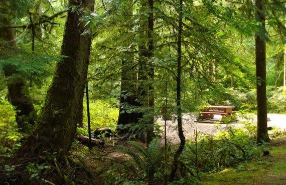 3-camping-goldstream.jpg