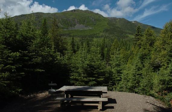 Vue dans le parc de la Gaspésie