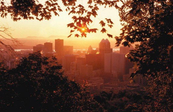 Downtown Montreal, view from Mount-Royal