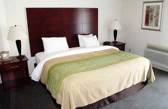 Comfort Inn & Suites - Suite lit King