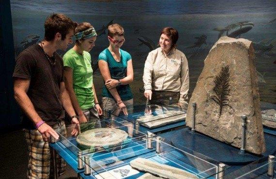 Parc fossilifere de Miguasha