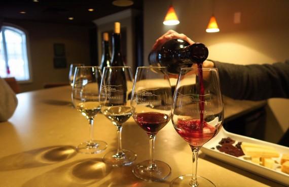 Dégustation du vin