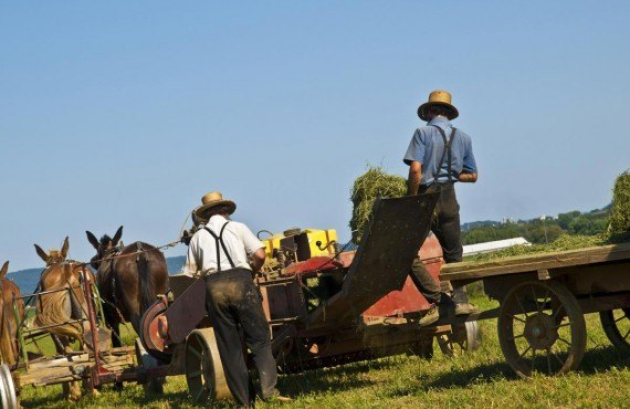 The Amish farmers