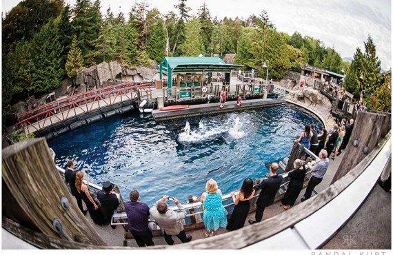 4-aquarium-vancouver.jpg