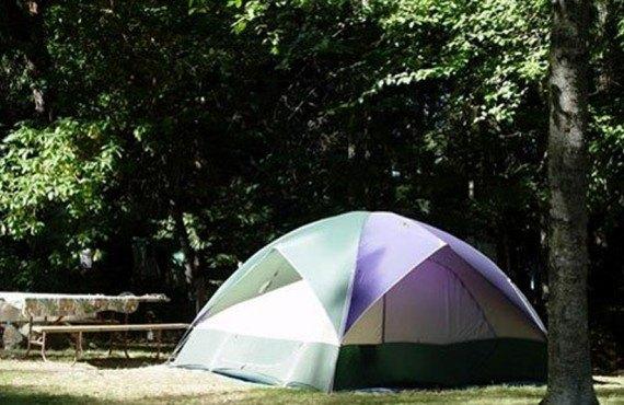 4-camping-cedar-springs-ranch