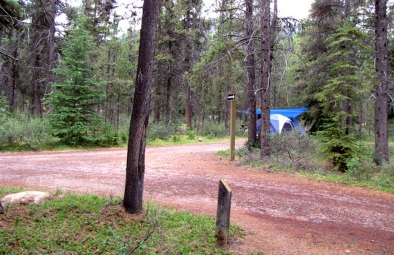 Camping Wapiti