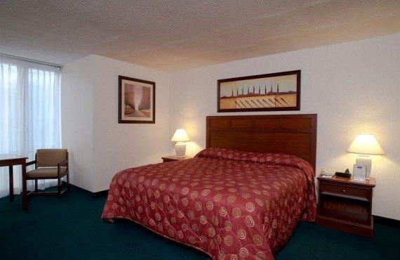 Midtown Hotel - Chambre lit Queen