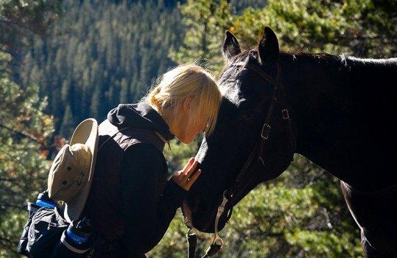 Communiquez avec votre cheval