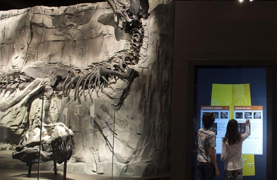 4-royal-tyrrell-museum