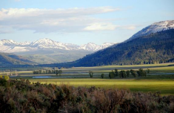 Paysage de Yellowstone