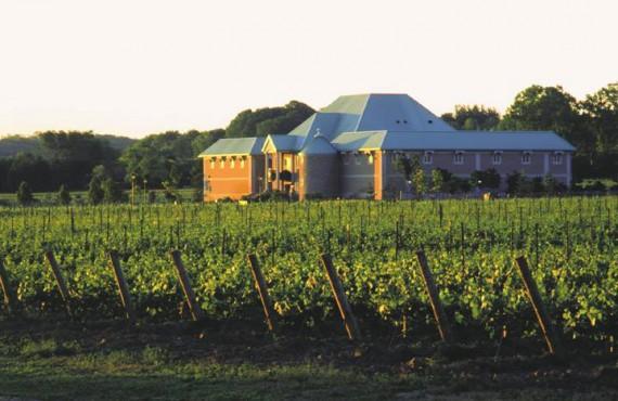 4-vignoble-chateau-charmes