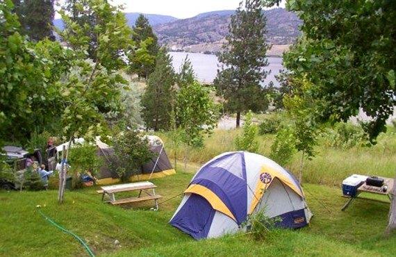 Camping Camp-Along