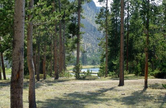 5-camping-madison