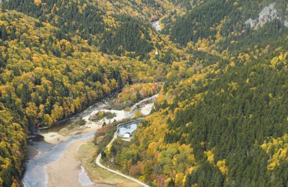 Parc national Fundy, Nouveau-Brunswick