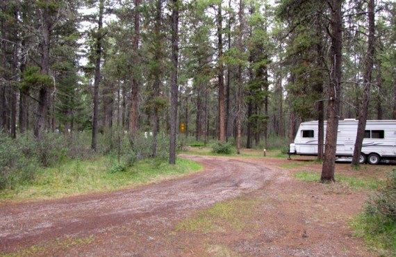 5-camping-wapiti