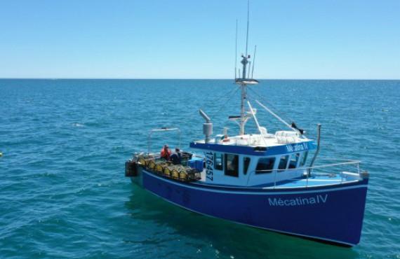 Set sail abord the Mecatina IV
