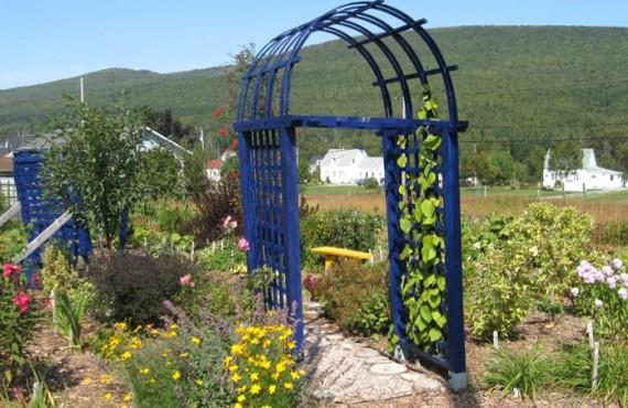 Auberge La Petite École - Jardin fleuri