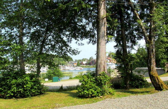 6-camping-ucluelet