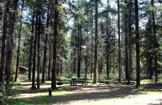 Camping Wapiti - Vue du site