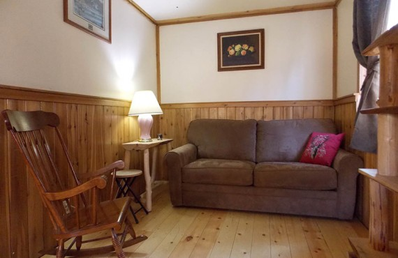 Chalet du Ranch Beaverfoot - Salon - Chalet-1