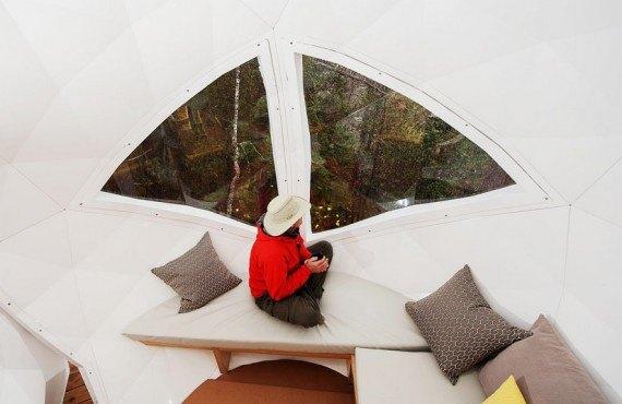 Intérieur de la sphère dans les arbres