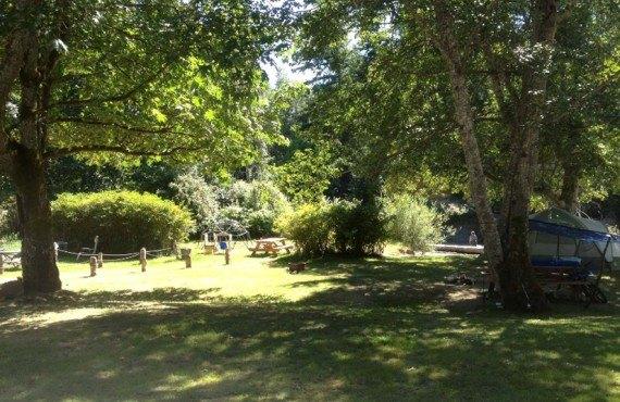 7-camping-cedar-grove