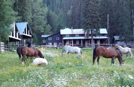 Lodge et Chalet du Ranch Beaverfoot - Golden, BC
