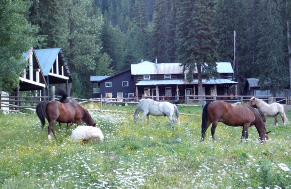 Lodge et Chalet du Ranch Beaverfoot - Golden, BC