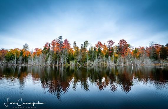 Le lac Amishk en automne
